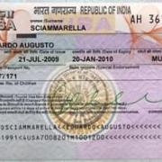 Туристам из России для посещения Индии необходима виза