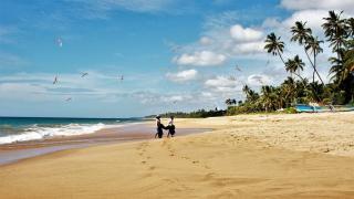 Туризм Шри-Ланка